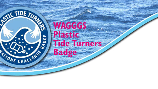 Image of WAGGGS Plastic Tide Turners Badge on some water
