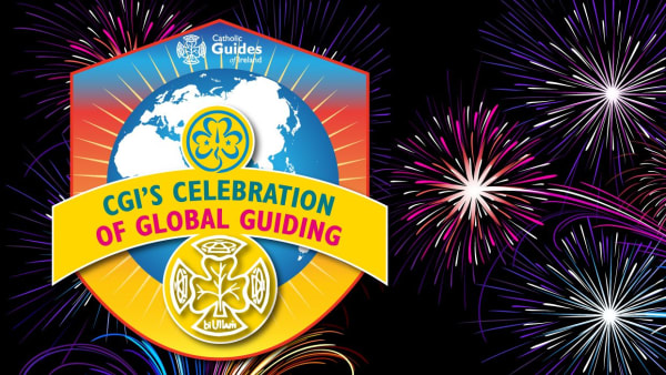 Fireworks background with CGI International Virtual Camp logo on it