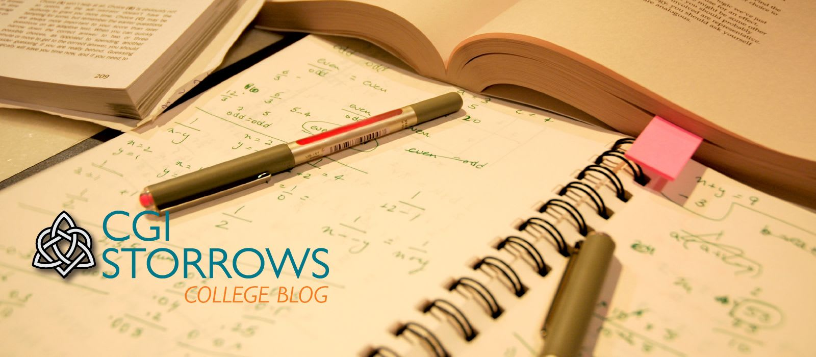 Storrows Blog- Exams and Assignments by Megan Dempsey